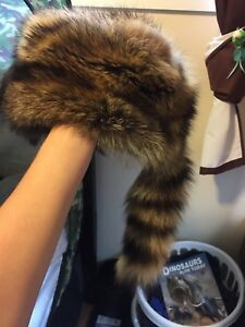 Real raccoon winter hat OBO willing to accept trades