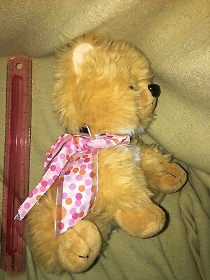 REALISTIC CUTE TAN  TEDDY BEAR  Puppy Dog POMERANIAN pooch parlor  Plush