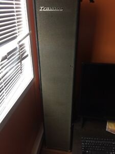 Two yorkville traynor speakers