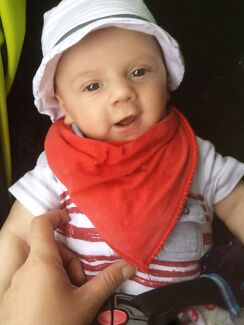 NEEDING HOUSE FOR THIS BEAUTIFUL LITTLE BOY AND MYSELF Hobart CBD Hobart City Preview