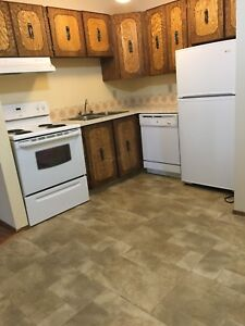 In Peace River, adult only , no pets 2 bedroom apartment
