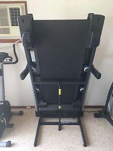 Pro-Form Endurance Treadmill Tenambit Maitland Area Preview