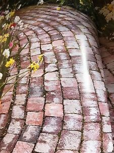 Looking for used bricks