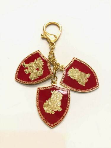 2021 Feng Shui Three 3 Celestial Shield Portable Amulet Keychain