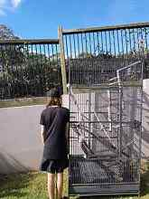 Large Bird cage for 100 Reedy Creek Gold Coast South Preview