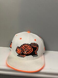 Vancouver Grizzlies vintage hat