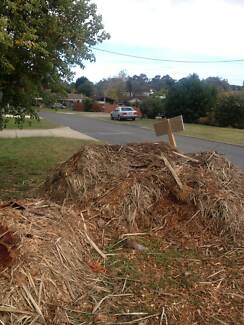 Free wood chipped mulch Dianella Stirling Area Preview