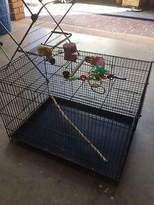 Black bird cage Evanston Park Gawler Area Preview