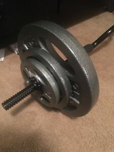 Curl bar with weights