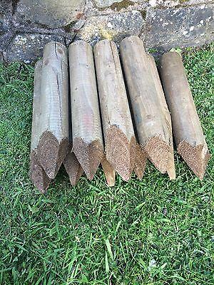 35 Wooden pegs 60mm round edging garden stakes x  12