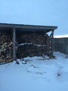 Seasoned Firewood ready to burn