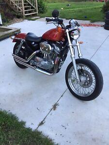 2000 Harley- Davidson Sportster 883