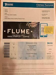 FLUME Event Lidcombe Auburn Area Preview