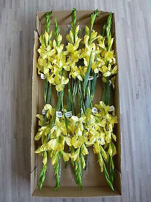 12 x Gladiole 12tlg Set Seidenblume Kunstblume Kunstpflanze gelb 264201 F65