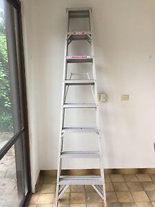 Ladder Fannie Bay Darwin City Preview