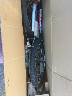 Radmax bike Asap