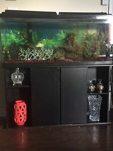 Aquarium 70gallon
