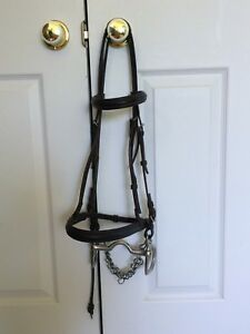 English Bridle