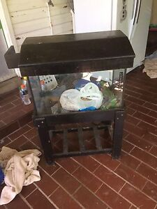 Fish tank Waratah West Newcastle Area Preview
