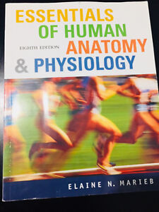 Essentials of human anatomy & physiology 8th ed