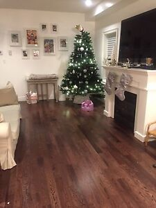 Organic baby daycare --1 space for 2 yrs + Cambridge Kitchener Area image 3