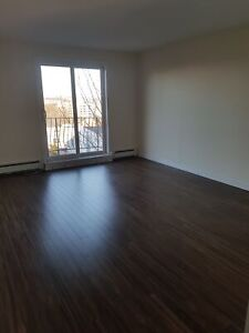 1 BDRM/BALCONY FAIRVIEW COMPLETELY RENOVATED AVAIL. MAY 1ST