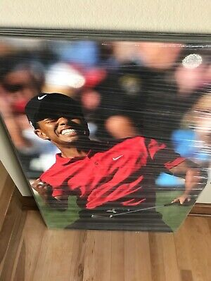 Tiger Woods Canvas Framed Picture Awesome 36x24 New In Factory Shrinkwrap