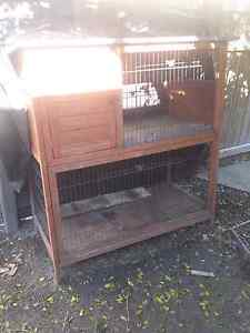 Guinea pig cage Burleigh Heads Gold Coast South Preview