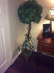 Topiary decor tree