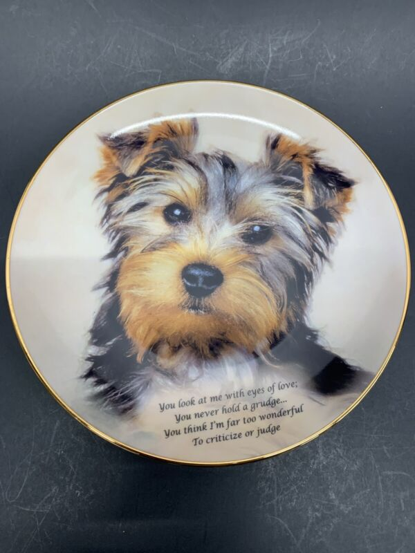 Cherished Yorkies EYES OF LOVE Plate Danbury Mint Yorkshire Terrier PUPPY New