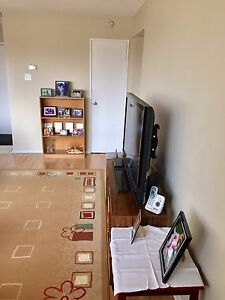 4 1/2 for rent in West Island, DDO - April free