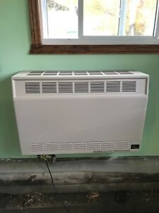 25,000 BTU wall mount propane furnace