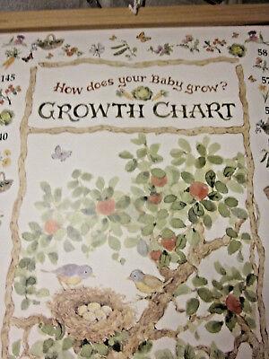 - Growth Chart Garden NIB Cream & Neutral Colors Height Chart Bunny Rabbits Ducks