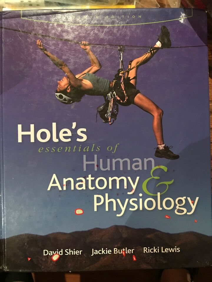 Contemporáneo Holes Essentials Of Human Anatomy And Physiology 10th ...