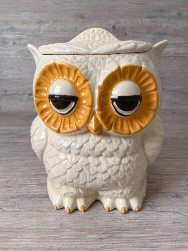 Vintage 1970s Double Sided Owl Ceramic Cookie Jar Kitchen Storage Sleepy Eyes