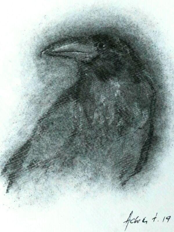 Original+Raven+Charcoal+Drawing+On+Paper+Bird+Portrait+Crow+Black+Bird
