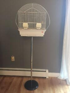 Antique Budgie Cage
