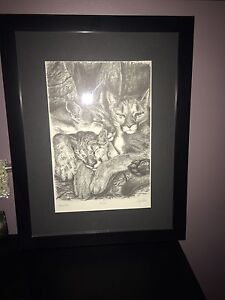Beautiful sketching 26/125 framed