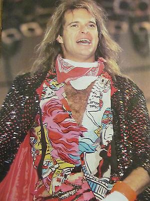 David Lee Roth, Van Halen, Full Page Vintage Pinup