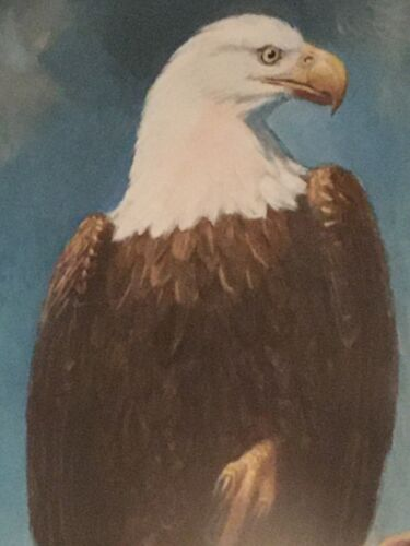 CHARLES R. KNIGHT-BALD EAGLE-ORIGINAL HAND-PAINTED LITHOGRAPH-EXTREMELY RARE!!!