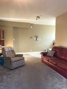 Newly Renovated Suite - Available May 1st!