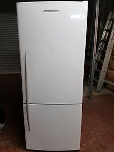 Fisher & paykel fridge Harrison Gungahlin Area Preview
