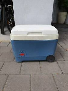 Esky - Fully Insulated 55 Litres