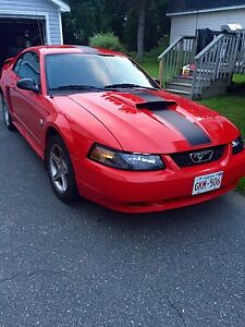 2004 Mustang Low Milage - St Stephen