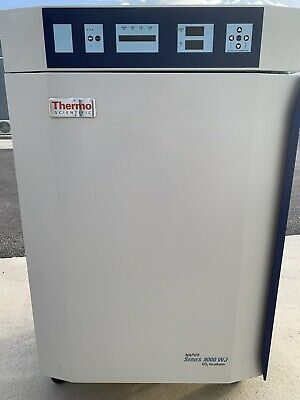 Thermo Scientific 3578 Napco Series 8000 Wj Co2 Water Jacketed Incubator Forma