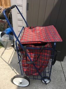 Large shopping cart with handle grips and removable bag