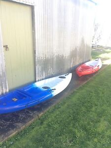 Kayak's Newport Hobsons Bay Area Preview