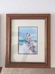 Surf Lifesaving  framed prints Thornlands Redland Area Preview