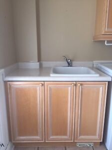 Laundry cabinet and deep sink
