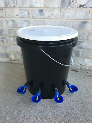 Labor Day Special Automatic Chicken Poultry Waterer Feeder Cheaper On Etsy